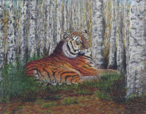 Siberean Tiger in a birch forest