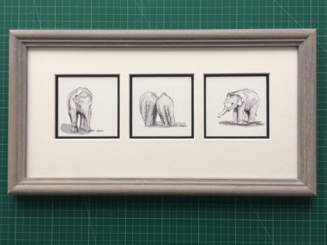 photo of framed baby elephants