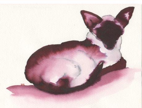 Inky Cat 12