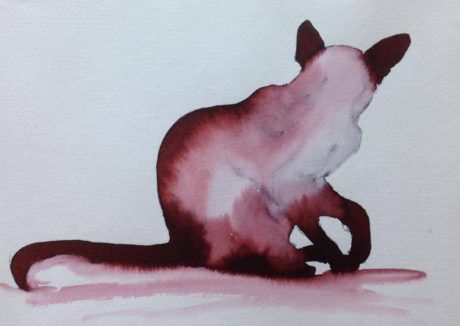 Inky Cat 5