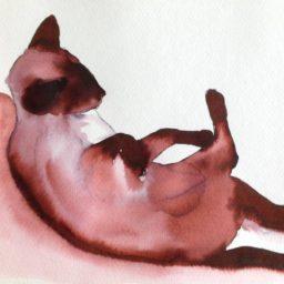 Inky Cat 6
